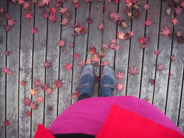 With the paths at Gwanak being filled with pretty leaves like these, I couldn't stop looking down as I walked.