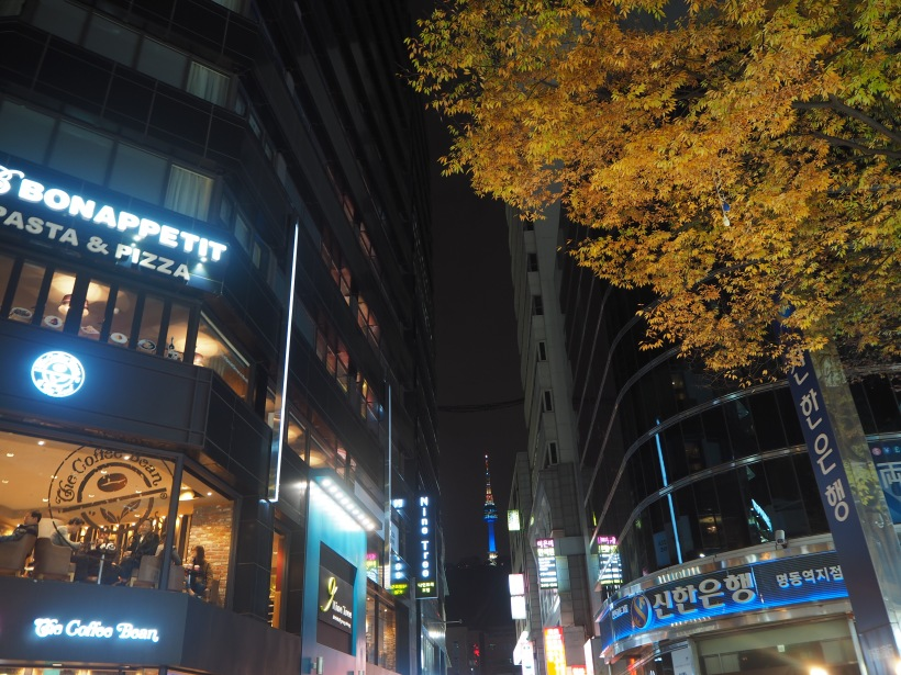 One of the fall foliage that lined the streets of Myeong Dong, with the litted Namsan Tower in the distance.